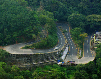 Take the Road Trip of a Lifetime: Wayanad Guide