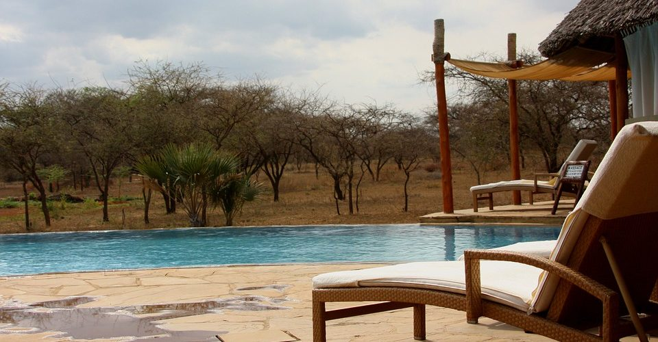 Top Countries For Safaris In Africa